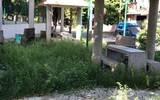Este parque tiene más de un año que las autoridades no le dan mantenimiento. Foto: Alejandro Gómez | Diario del Sur