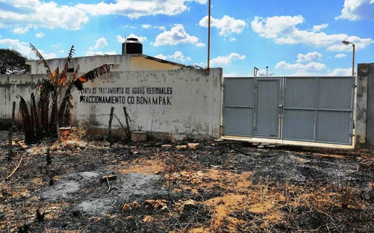 Dos laboratorios fueron suspendidos - El Heraldo de Chiapas