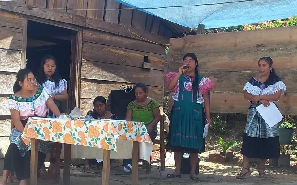 Reúnen 15 mil firmas para proteger a ecologistas en Chiapas
